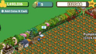 Farmville-Farm-Cash